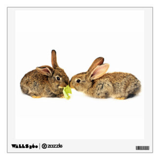 Two Cute Rabbits Share A Meal Wall Sticker