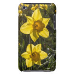 Two Daffodil Flowers iPod Touch Covers