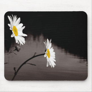 Two Daisies - Selective Color, Black and White Mouse Pad
