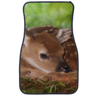 Two day old White-tailed Deer baby, Kentucky. Car Floor Mat