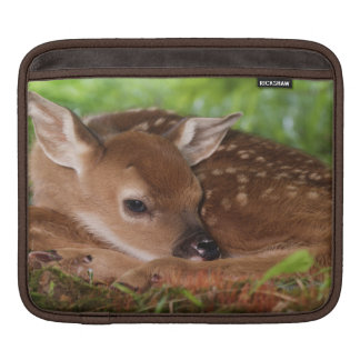 Two day old White-tailed Deer baby, Kentucky. Sleeve For iPads