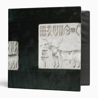 Two decorated seals depicting a zebu and a vinyl binder