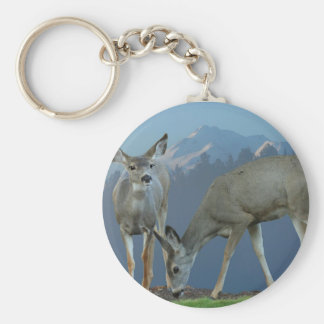 TWO DEER AND MT SHASTA #1 KEYCHAINS
