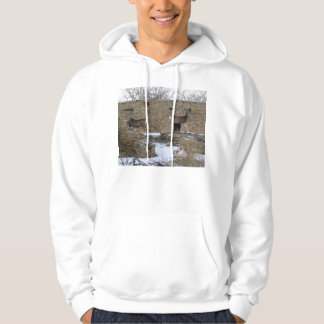 two deer at aztec ruins new mexico hoodie