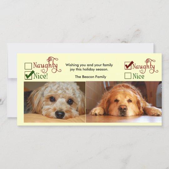 Dog Christmas Card Photo.Two Dog Christmas Card Photo Template