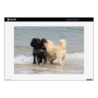 Two dogs at beach decal for laptop