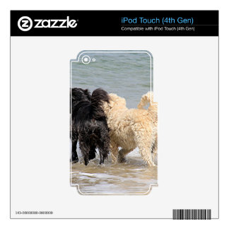 Two dogs at beach decals for iPod touch 4G