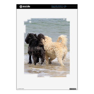 Two dogs at beach iPad 2 skins