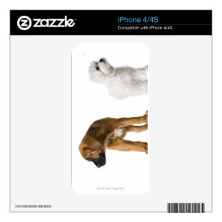 Two Dogs Decals For The iPhone 4S