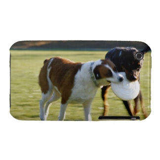 Two Dogs Fighting over Plastic Disc Case-Mate iPhone 3 Case