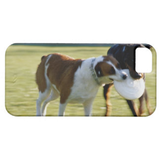 Two Dogs Fighting over Plastic Disc iPhone SE/5/5s Case