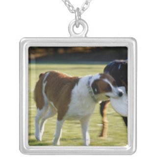 Two Dogs Fighting over Plastic Disc Square Pendant Necklace