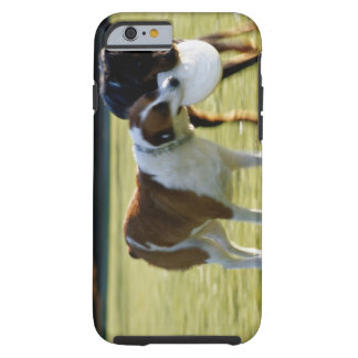 Two Dogs Fighting over Plastic Disc Tough iPhone 6 Case