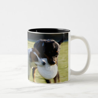 Two Dogs Fighting over Plastic Disc Two-Tone Coffee Mug