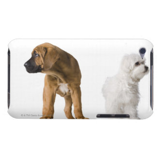 Two Dogs iPod Touch Cover