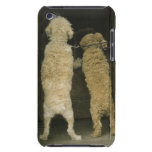 Two dogs looking in door window, rear view iPod touch covers