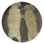 Two dogs looking in door window, rear view melamine plate