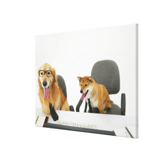 Two dogs wearing tie and glasses sitting on 2 gallery wrapped canvas