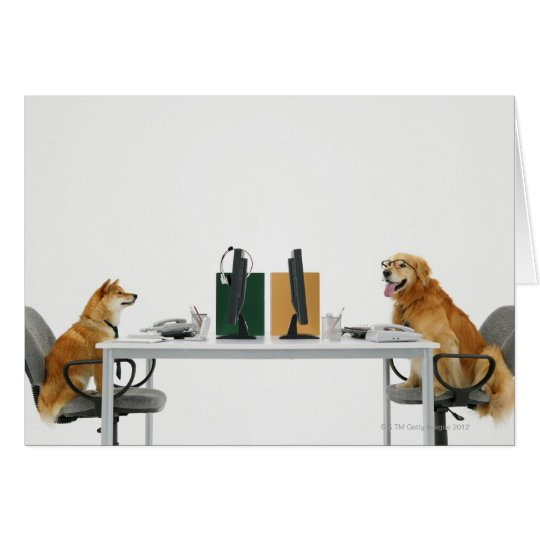 Two dogs wearing tie and glasses ,sitting on card