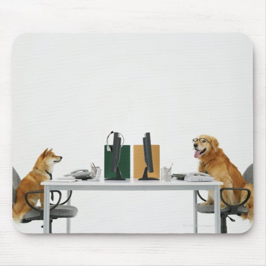 Two dogs wearing tie and glasses ,sitting on mouse pad
