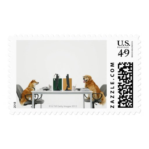 Two dogs wearing tie and glasses ,sitting on stamp