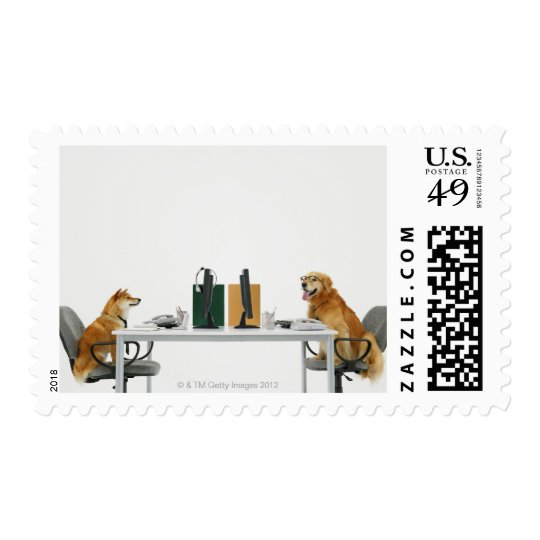 Two dogs wearing tie and glasses ,sitting on postage