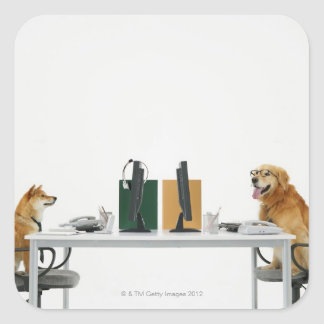 Two dogs wearing tie and glasses ,sitting on square sticker