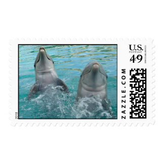 Two Dolphins Postage