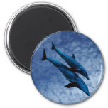 Two Dolphins Swiming at Sea Fridge Magnets