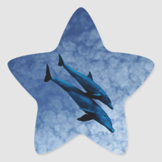 Two Dolphins Swiming at Sea Star Sticker