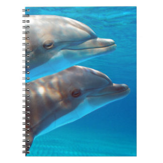 Two Dolphins swimming Notebook
