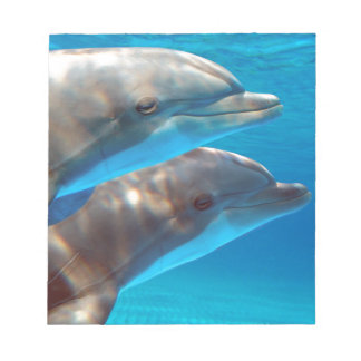 Two Dolphins swimming Notepad