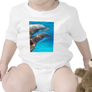 Two Dolphins swimming Baby Creeper