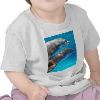 Two Dolphins swimming T Shirt