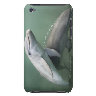 Two Dolphins underwater Barely There iPod Case