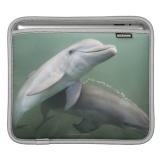 Two Dolphins underwater iPad Sleeve