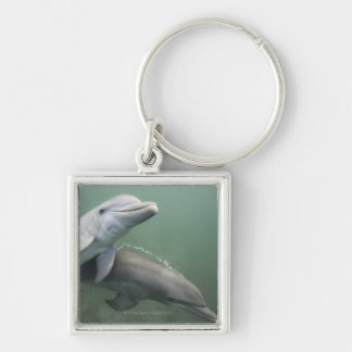 Two Dolphins underwater Silver-Colored Square Keychain