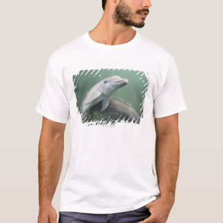 Two Dolphins underwater T-Shirt