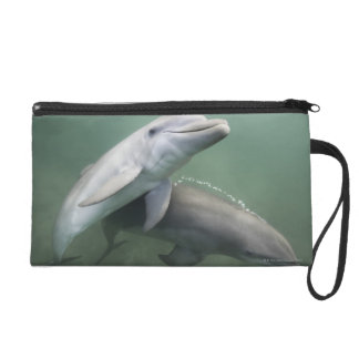 Two Dolphins underwater Wristlet Purse