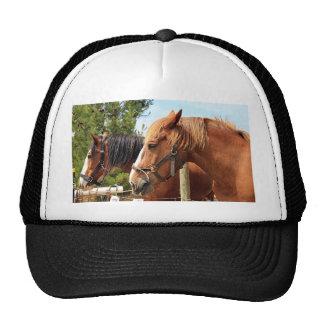 Two draft horses trucker hat