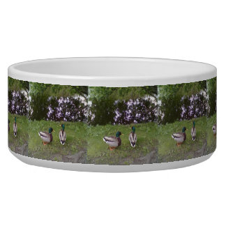 Two Duck near a pond Dog Food Bowls
