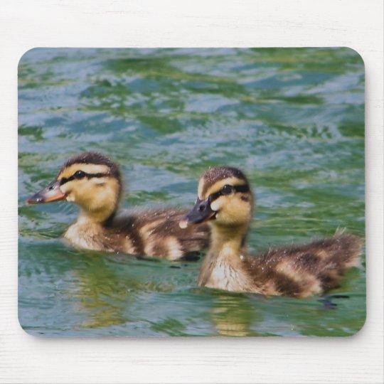 two ducklings mousepad