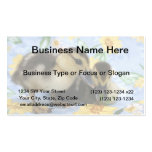 two ducklings one eyeing camera close business card template