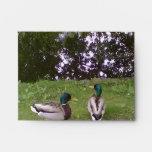 Two Ducks Envelope