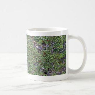 Two Eagles in an Evergreen Tree Coffee Mug