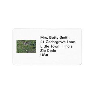 Two Eagles in an Evergreen Tree Label