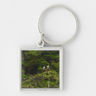Two Eagles Perched Painterly Keychain