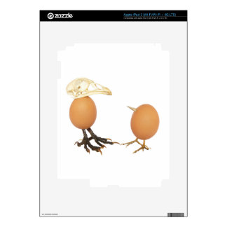 Two eggs as birds with beaks skull and legs decal for iPad 3