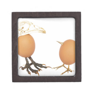 Two eggs as birds with beaks skull and legs gift box