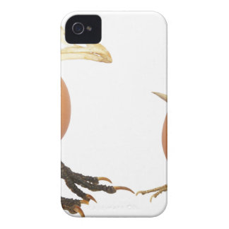 Two eggs as birds with beaks skull and legs iPhone 4 case